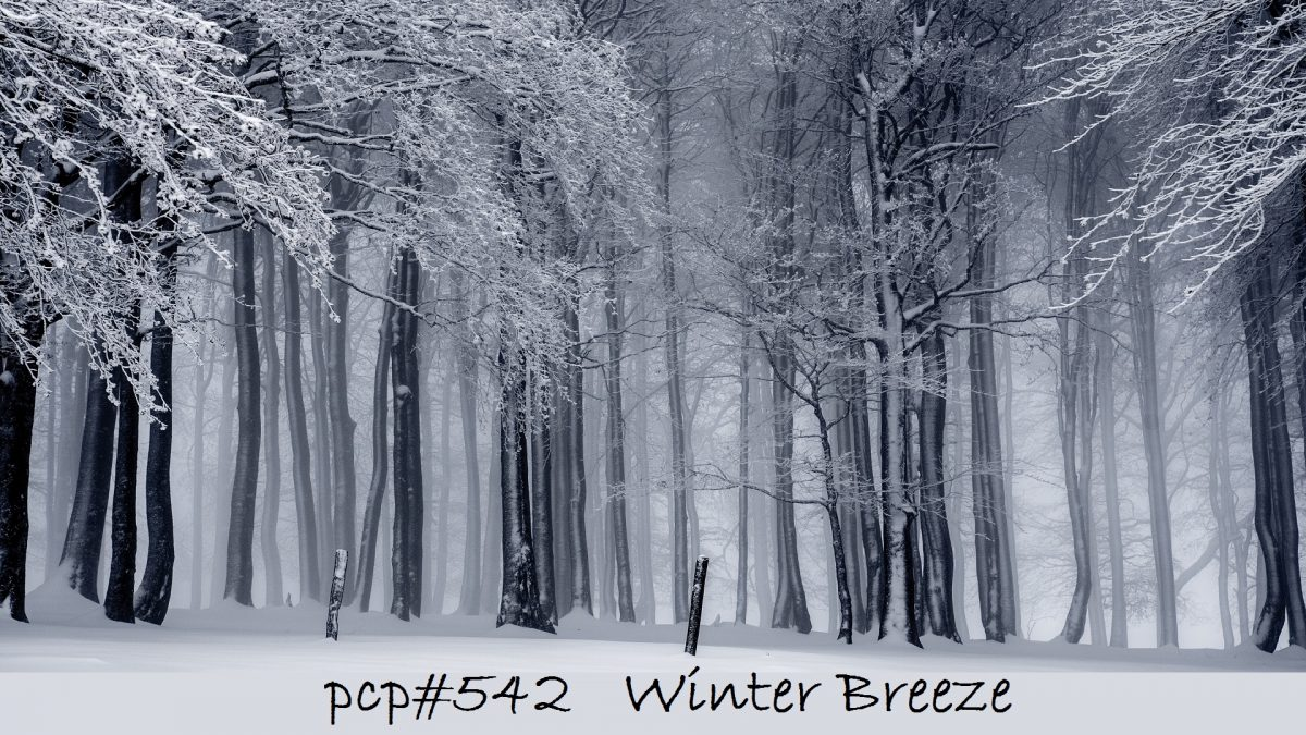 PCP#542... Winter Breeze