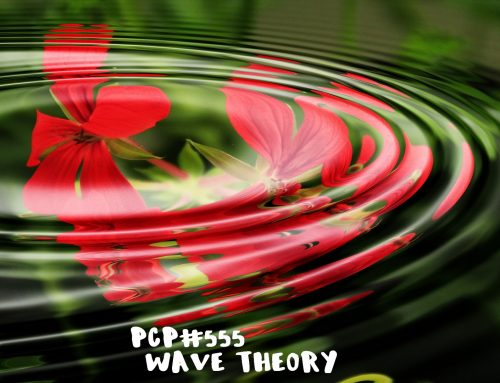 PCP#555… Wave Theory…