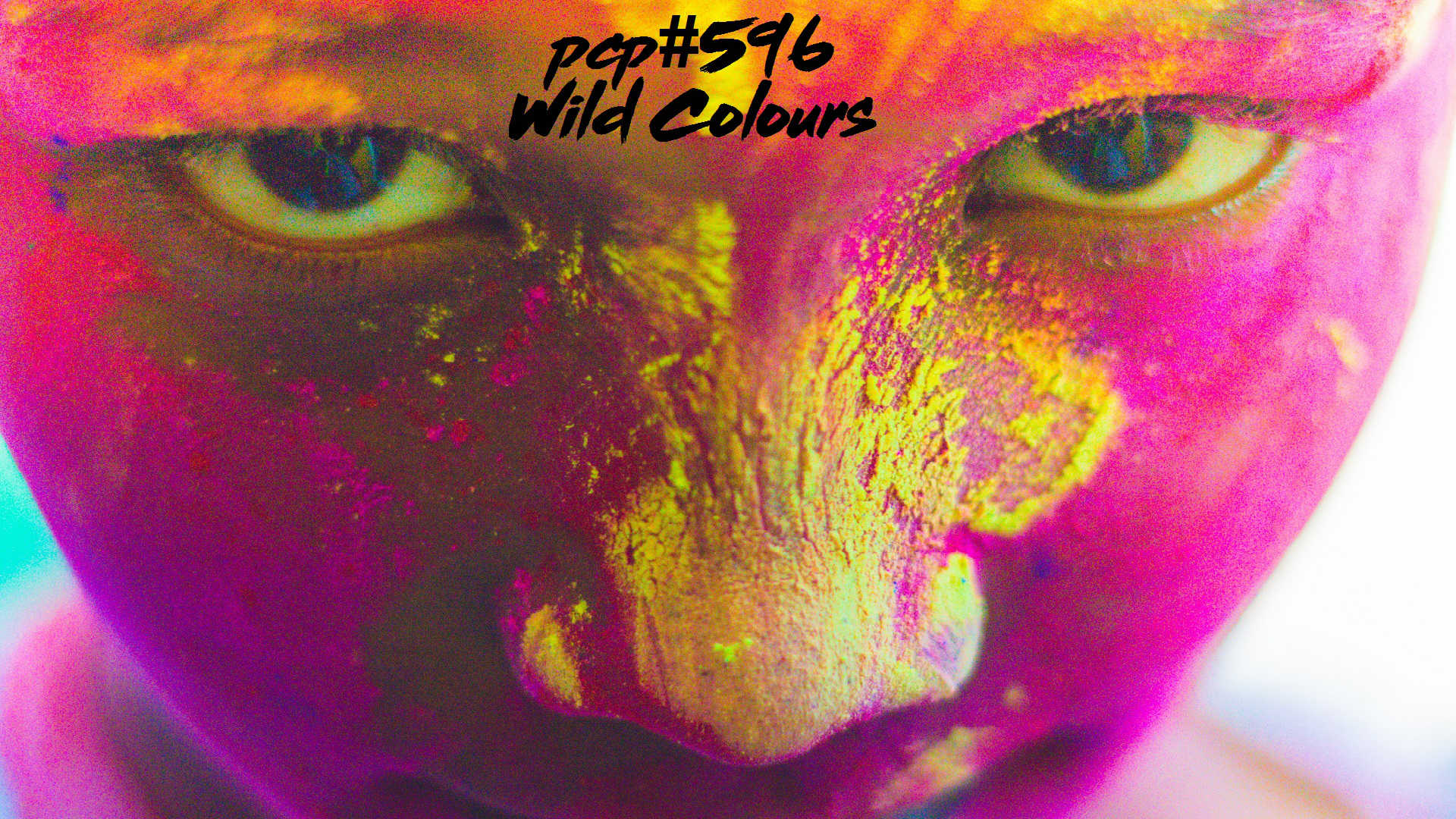 PCP#596... Wild Colours....