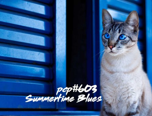 PCP#603… Summertime Blues…