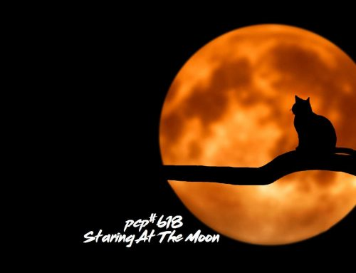 PCP#618… Staring At The Moon….