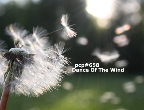 PCP#658… Dance Of The Wind…