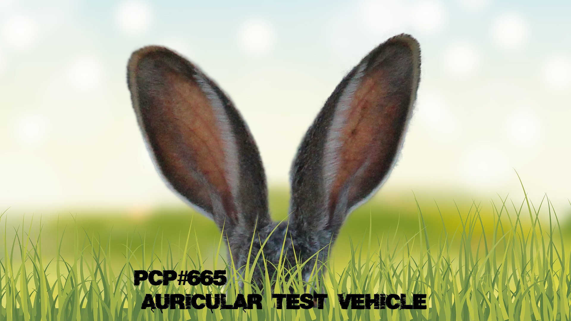 PCP#655.... Auricular Test Vehicle....