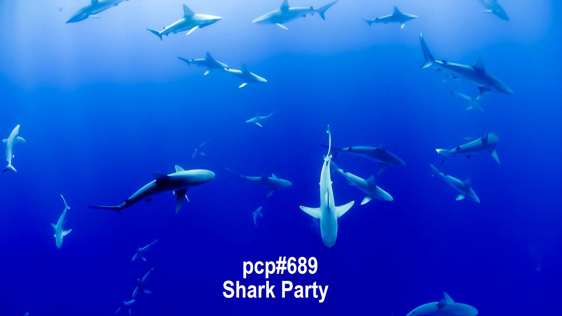 PCP#688... Shark Party!